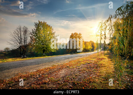 Highway through the beautiful autumn forest and bright sun - Stock Photo