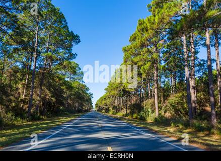 US98 west of Apalachicola, Franklin County, Florida, USA - Stock Photo