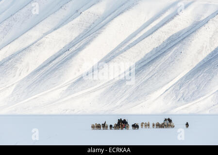 Two mushers with teams of sled dogs running through snow - Stock Photo