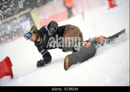 Carezza, Italy. 16th Dec, 2014. Masaki Shiba (JPN) Snowboarding : Snowboard World Cup Men's Parallel Giant Slalom - Stock Photo