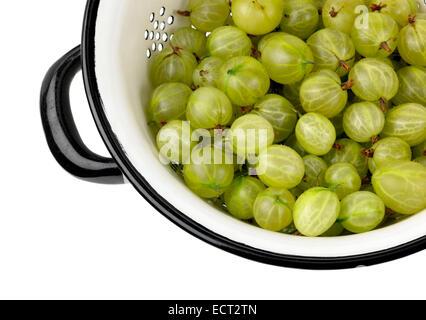 gooseberries in colander - Stock Photo