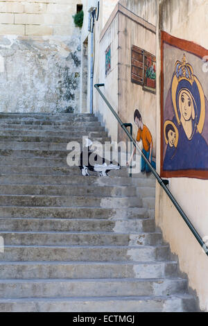 Stone Staircase with Wall art of the mother Mary and man feeding a black and white cat - Stock Photo