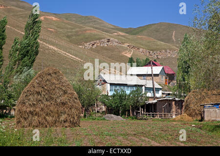 Haystack in field near rural Kyrgyz village in the mountains in the Osh Province, Kyrgyzstan - Stock Photo