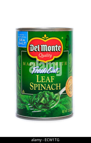 Del Monte Foods Canned Fresh Cut Leaf Spinach - Stock Photo