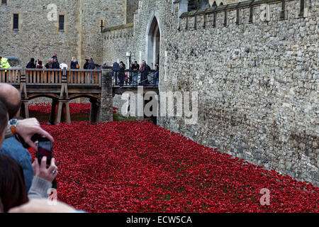 Tourists catch a final view of Blood Swept Lands & Seas of Red, before it is finally cleared by hundreds of volunteers - Stock Photo