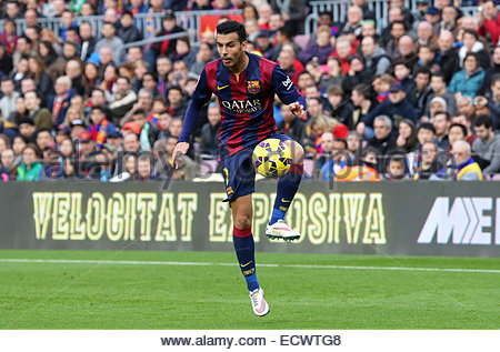 Barcelona, Spain. 20th Dec, 2014. Pedro Rodriguez in the match between FC Barcelona and Cordoba CF, for the week - Stock Photo
