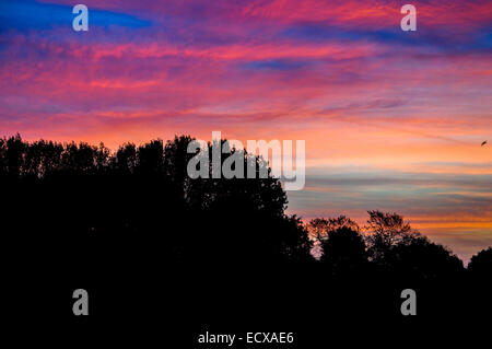 outdoor, pink, sunlight, purple, cloud, color, blue, travel, amazing, colorful, red, beauty, sunrise, sunset, seascape, - Stock Photo