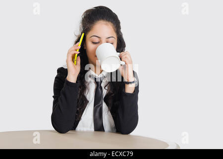 1 indian Business woman talking phone - Stock Photo