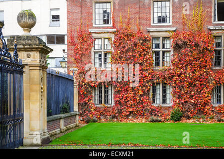 Red ivy growing on St Catharine's College seen from Trumpington Street, Cambridge Cambridgeshire England United - Stock Photo