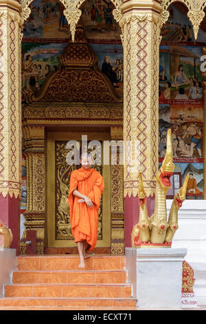 Young Buddhist Monk Walking And Smiling To The Camera. Looking Down - Stock Photo