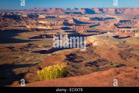 Grandview Point in Canyonlands National Park, Utah - Stock Photo