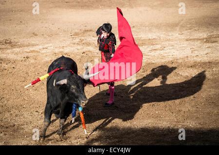 Bullfighter after a 'Veronica' in the arena, bullfighting, El Barco de Avila, Avila, Spain - Stock Photo
