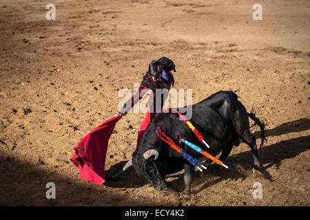 Bullfighter, bullfighting, El Barco de Avila, Avila, Spain - Stock Photo