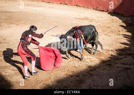 Torero giving the the death blow, bullfighting, El Barco de Avila, Avila, Spain - Stock Photo