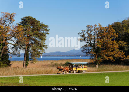 Horse drawn carriage on Herreninsel island, Lake Chiemsee, Chiemgau, Upper Bavaria, Bavaria, Germany - Stock Photo