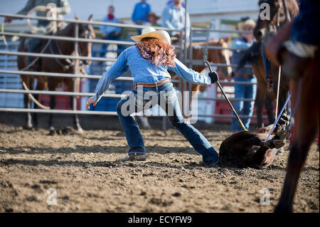 Caucasian cowgirl tying horse in rodeo on ranch Stock Photo