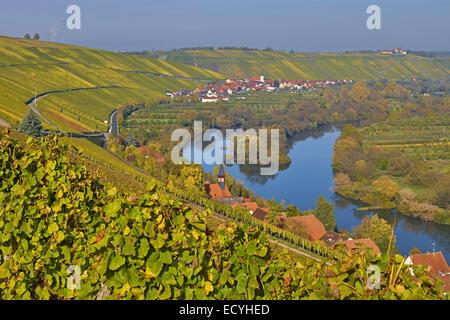 Vineyards near Escherndorf, Bavaria, Germany - Stock Photo