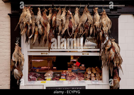 Traditional butchers shop front with game and pheasants hanging up on display, Ludlow, Shropshire UK - Stock Photo