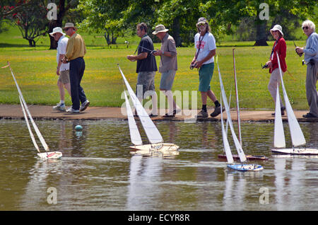 AUCKLAND, NZL - DEC 21 2014:People racing remote controlled sailing wooden yachts in a pond.The racing is governed - Stock Photo