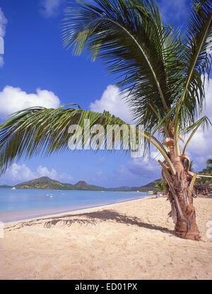 Beach view, Jolly Beach Resort & Spa, Saint Mary's Parish, Antigua, Antigua and Barbuda, Lesser Antilles, Caribbean - Stock Photo