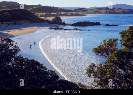 People surfing small waves at idyllic sandy beach in Tawharanui, New Zealand - Stock Photo