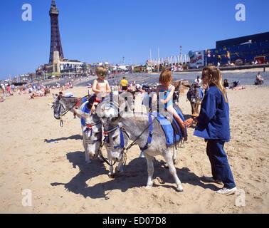 Donkey rides on Blackpool Sands, Blackpool, Lancashire, England, United Kingdom - Stock Photo