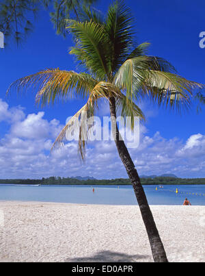 Tropical beach, Île aux Cerfs Island, Flacq District, Republic of Mauritius - Stock Photo