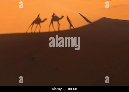 Morocco, Sahara Desert, Shadows of people and camels on sand - Stock Photo