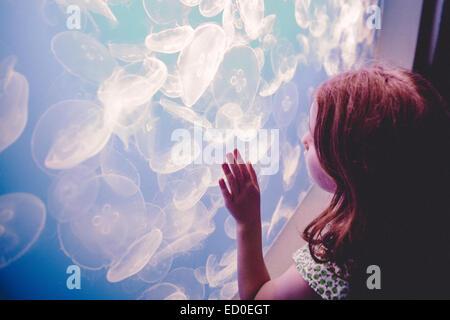Girl (6-7) watching jellyfish in aquarium