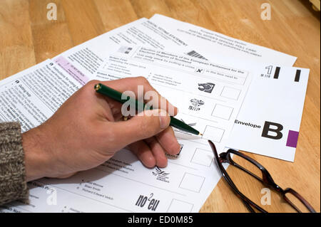 Completing and preparing a postal vote for sending off - Stock Photo