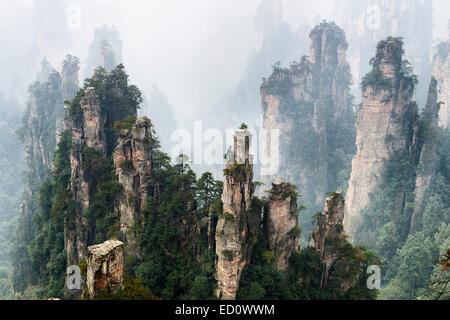 Foggy mountan landscape scenery of Zhangjiajie National Forest Park, Zhangjiajie, Hunan, China - Stock Photo