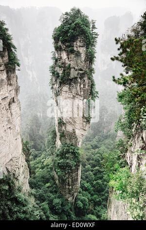 Mountain spire covered in trees at Zhangjiajie National Forest Park, Zhangjiajie, Hunan, China - Stock Photo