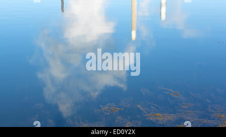 Several smoke stacks emitting steam and vapor reflected on calm water with seaweed in the foreground. - Stock Photo