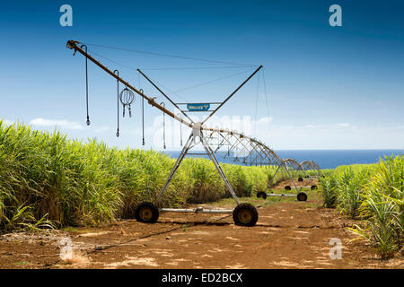 Mauritius, Albion, agriculture, Valley linear crop irrigation machine in sugar cane fields - Stock Photo