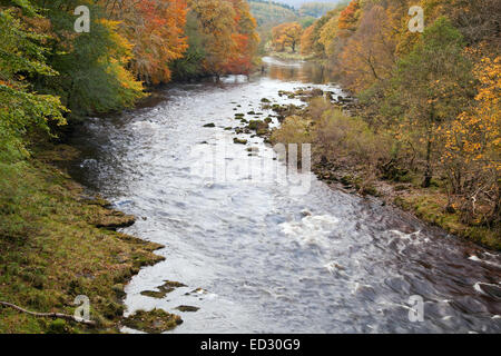 The River Wharfe above The Strid - Stock Photo