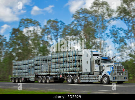 Long semi trailer truck / road train carrying dangerous cargo, cylinders of LP gas, on country road in Australia - Stock Photo
