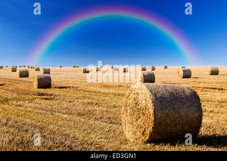 Straw bales on field in late summer and rainbow on blue sky - Stock Photo