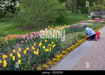 Brooklyn Botanic Garden in New York City Stock Photo: 164040358 - Alamy