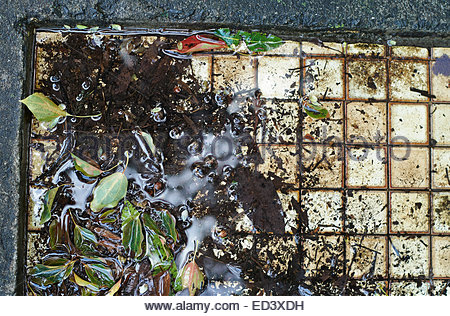 Top view of the tiled floor of an abandoned railway station, partially covered in leaf litter and organic matter; - Stock Photo