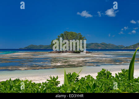 Anse Union Beach in La Digue, Seychelles - Stock Photo