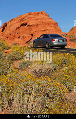 Road through Valley of Fire State Park, near Las Vegas, Nevada. - Stock Photo