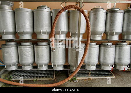 A group of milk churns - Stock Photo