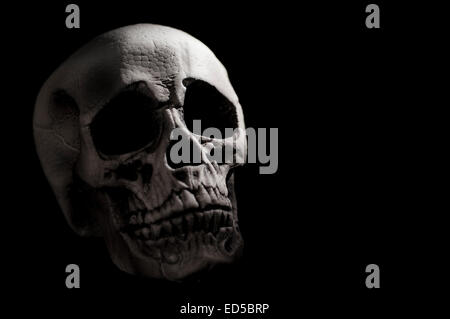 Dark Human Skull - Stock Photo