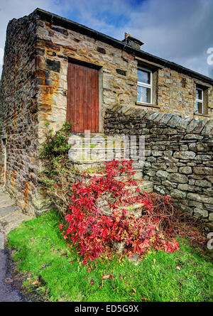 Seems like the only way into this cottage is via this door that is if you can find your way through the undergrowth. - Stock Photo
