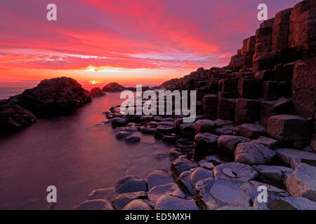The Giant's Causeway, Northern Ireland - Stock Photo
