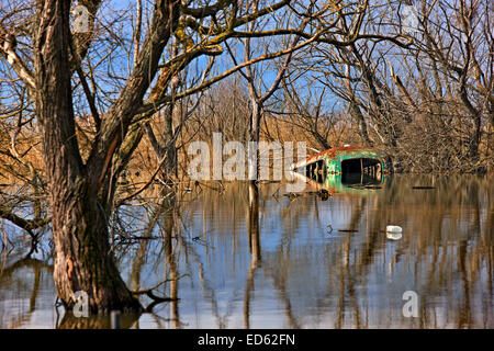 Sunken bus at lake Doirani, Kilkis prefecture, Macedonia, Greece - Stock Photo