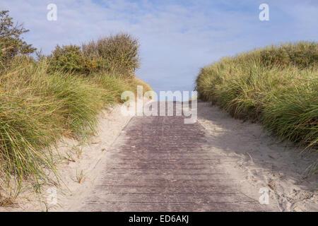 path between dunes on isle (north sea) - Stock Photo