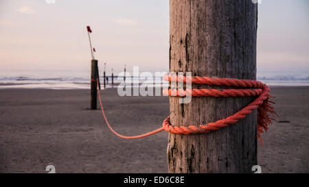 strong red rope on wooden stake - Stock Photo