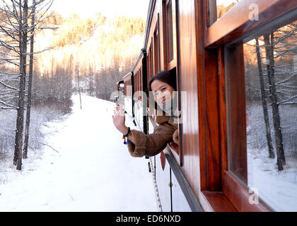 Hohhot. 28th Dec, 2014. A tourist looks out from a window of the train running through the Moridaga Forest Park - Stock Photo