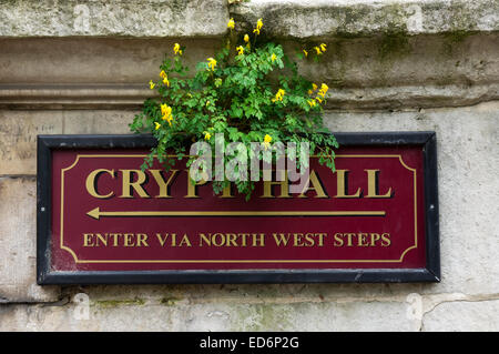 Sign for Crypt Hall at St George in the East church. - Stock Photo